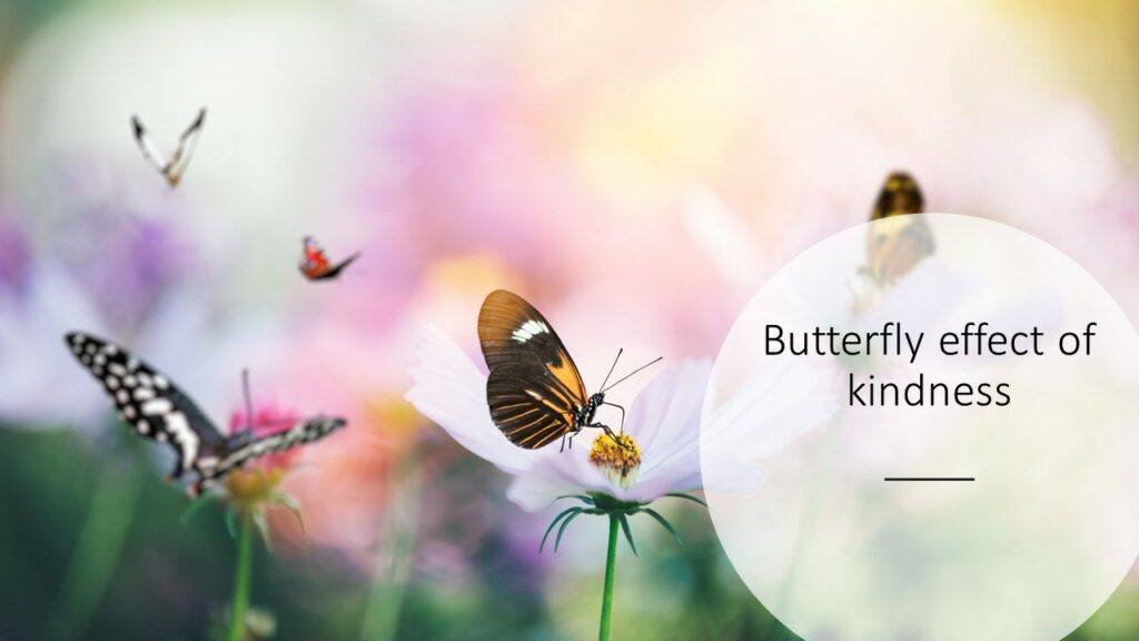Butterfly-effect-of-kindness